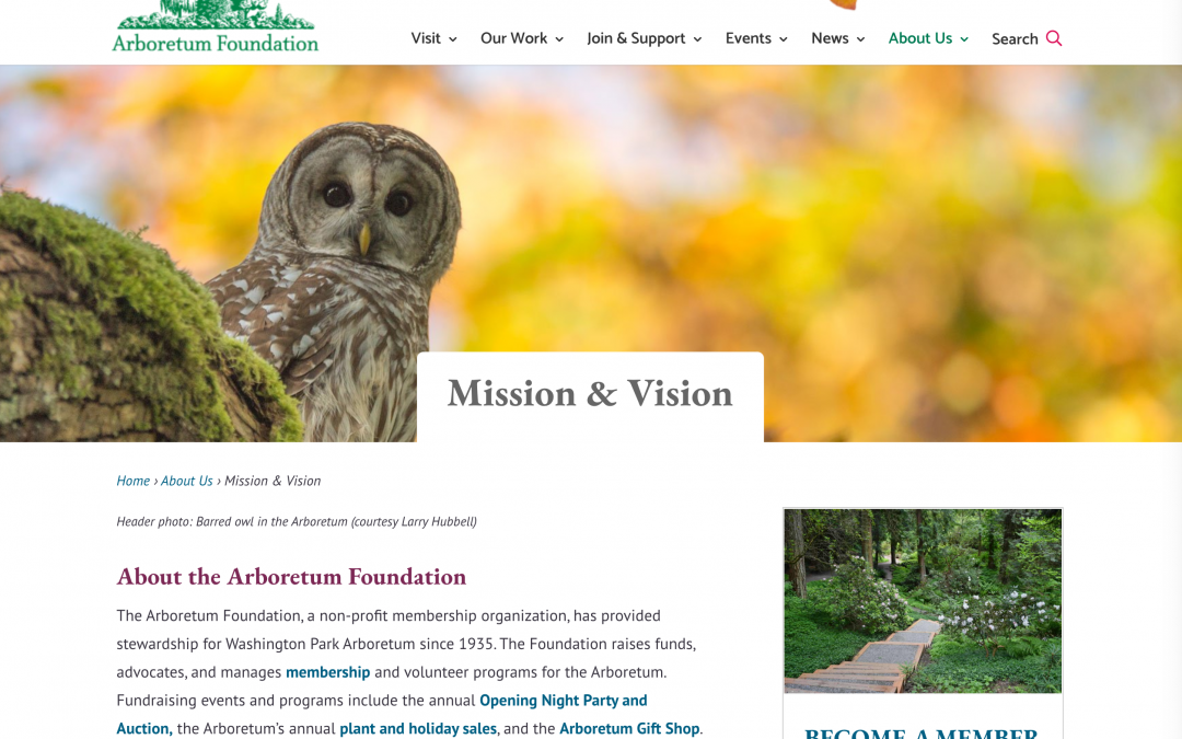 Mission and Vision page with owl